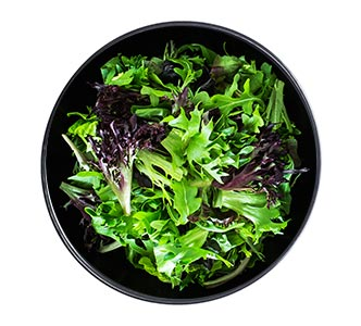 A bowl of green and purple mixed greens.