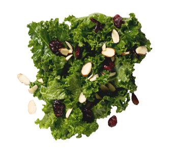 Cranberry Almond Kale Salad