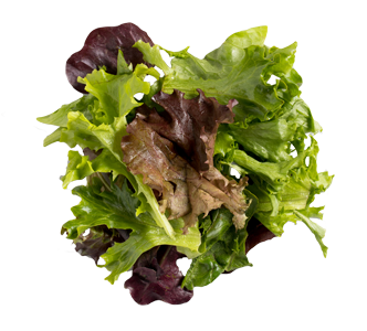 Artisan Mixed Greens 7